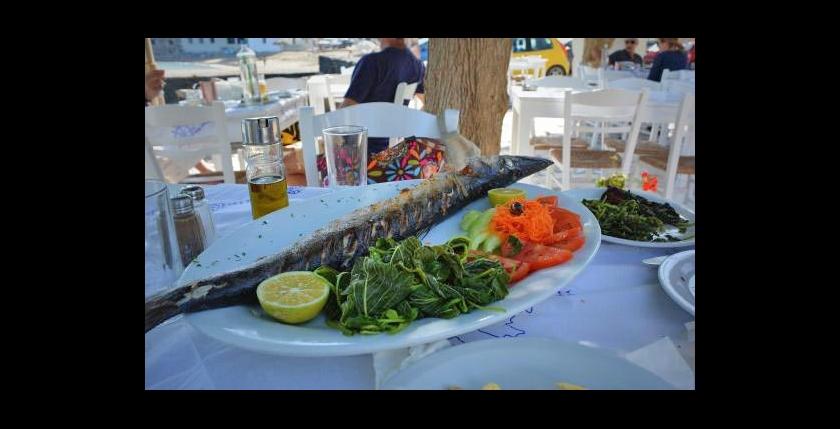 Apanemi Fish Tavern 6