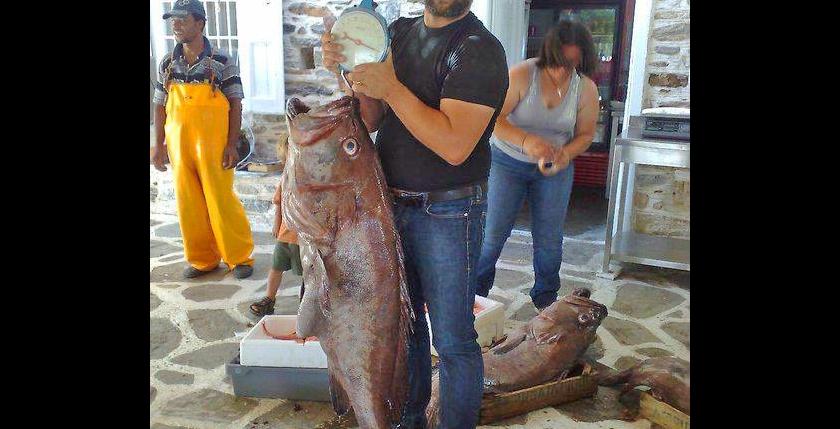 Apanemi Fish Tavern 9