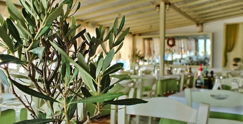 Elaea Restaurant 15
