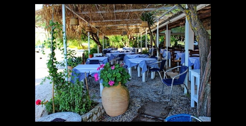 Eucalyptus Taverna 4