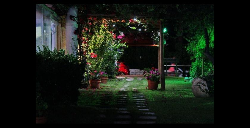 San Carlos Restaurant 13