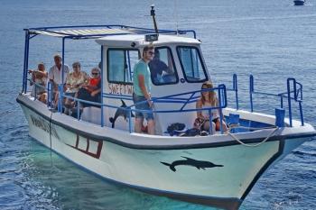 Sea Taxi Sfakia