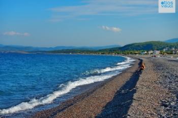Evia Agia Anna Photos