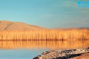 Petron Lake