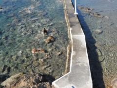 Leros Agios Isidoros 10