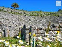 Epirus Dodoni 5