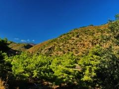 Sougia Crete 13